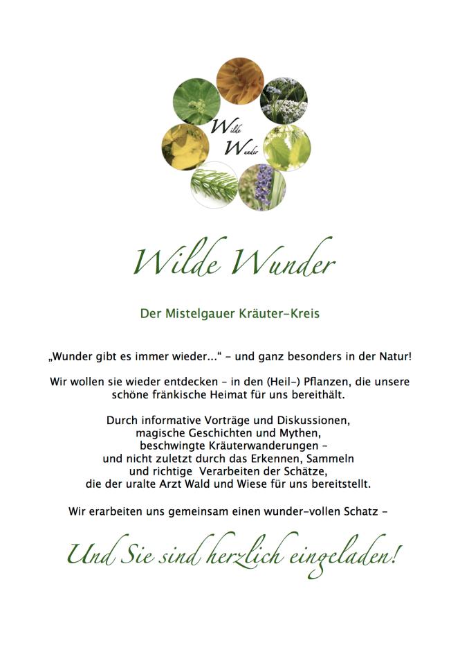 wilder wunder flyer1.png